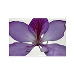 beautiful flower Rectangle Magnet (100 pack)