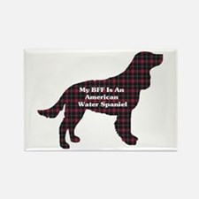 American Water Spaniel Rectangle Magnet (10 pack)