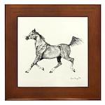Arabian Horse Framed Tile