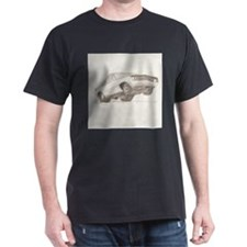 Camero Z28 T-Shirt