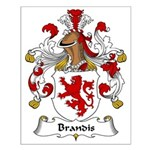 Brandis Family Crest Small Poster