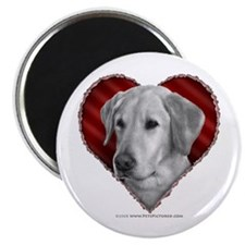 Yellow Lab Valentine Magnet