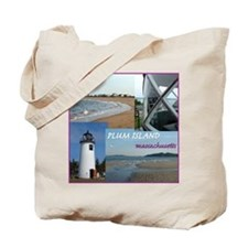 Plum Island Beach Bag