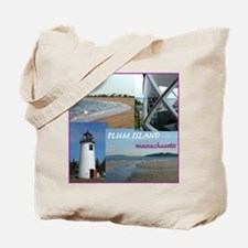 Plum Island Beach Bag