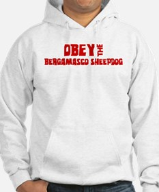 Obey the Bergamasco Sheepdog Jumper Hoody