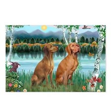 Birches / Vizsla pair Postcards (Package of 8)