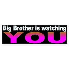 BIG BROTHER Bumper Bumper Sticker
