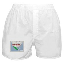 Funny Immigration Boxer Shorts