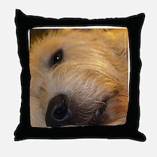 Handsome Male IRW Throw Pillow