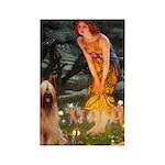Fairies / Briard Rectangle Magnet (10 pack)
