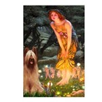 Fairies / Briard Postcards (Package of 8)