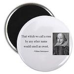 Shakespeare 6 Magnet
