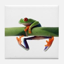 Unique Frog Tile Coaster