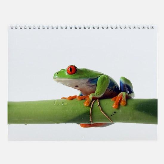 Cute Amphibians Wall Calendar