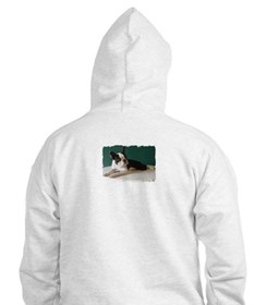 BOSTON TERRIER WITH BUBBLES Hoodie