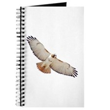 Unique Redtail hawk Journal
