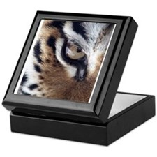 Tiger Eye Keepsake Box