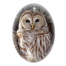 Cute Owl Oval Ornament
