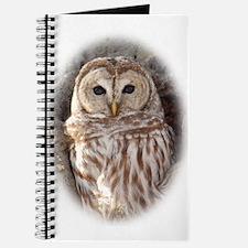 Cute Barred owl Journal