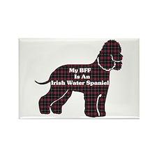 Irish Water Spaniel Rectangle Magnet (100 pack)