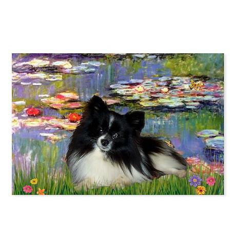 Lilies / Pomeranian (b&w) Postcards (Package of 8)