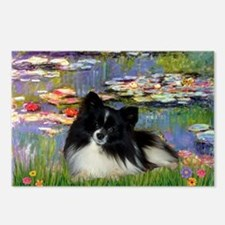 Lilies / Pomeranian (b&w) Postcards (Package of 8)