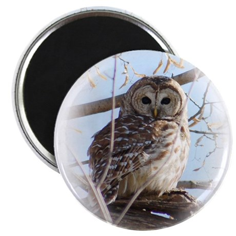 BarredOwlTree Magnets