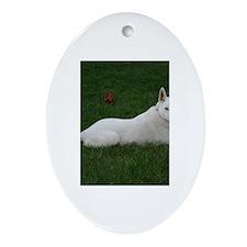 White Shepherd Oval Ornament