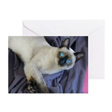 Greeting Cards (Pk of 10) - Sam, the Siamese cat