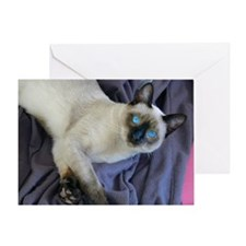 Greeting Card - Sam, the Siamese cat