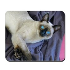 Mousepad - Sam, the Siamese cat