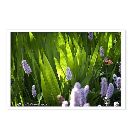 Summer Flowers Postcards (Package of 8)