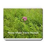 Pink Flowers in Field of Ferns - Mousepad