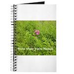 Pink Flowers in Field of Ferns - Journal