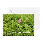Pink Flowers in Field of Ferns-Card
