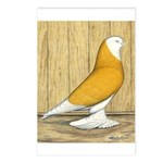 Yellow Bald West Postcards (Package of 8)