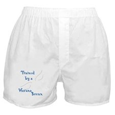 Trained by a Havana Boxer Shorts