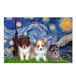 Starry Night /Pomeranian pups Postcards (Package o