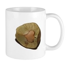 Mexican Jumping Bean Mug