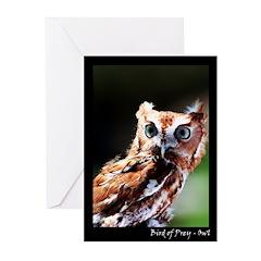 Bird of Prey - Owl Greeting Cards (Pk of 10)