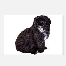 Shih Poo Postcards (Package of 8)