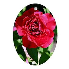 Visions of Roses Keepsake (Oval)
