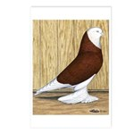 Red Bald West Postcards (Package of 8)