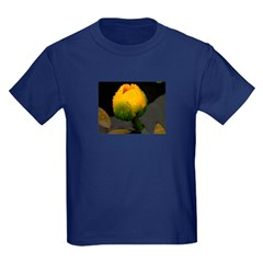 Pond Lilly T