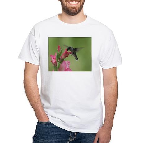 Hummingbird And Gladiolas White T-Shirt