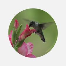 "Hummingbird And Gladiolas 3.5"" Button"