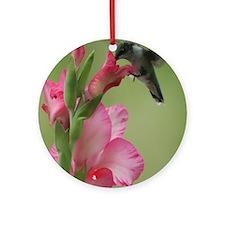 Hummingbird and Gladiolas Ornament (Round)
