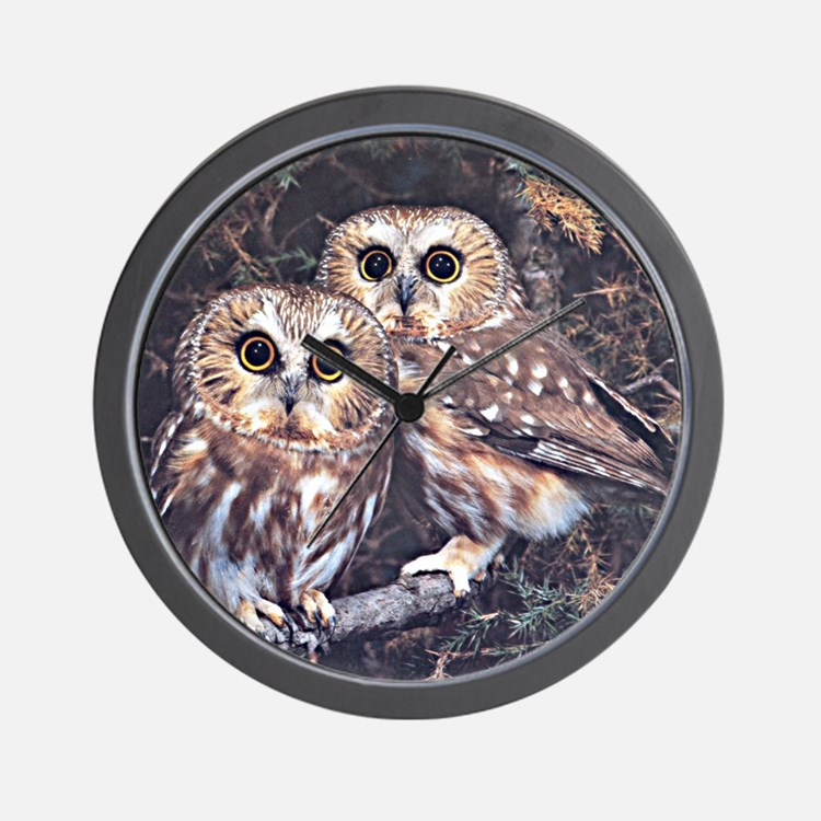 Cute Eagle owl Wall Clock