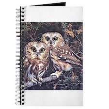 Cool Burrow Journal