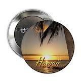 Hawaiian Stickers & Flair